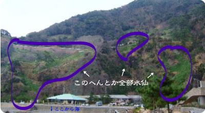 20090210_suisen.jpg